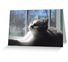 Sweet Baby Blue Greeting Card