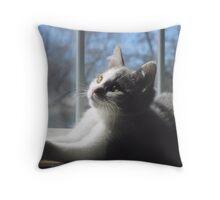 Sweet Baby Blue Throw Pillow
