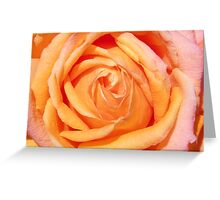 Heart Of The Rose Greeting Card