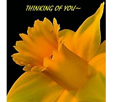 THINKING OF YOU~ Photographic Print