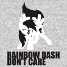 rainbow don't care by timothy hance