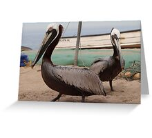 Pelicans I - Pelicanos Greeting Card