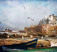 Essaouira, Morocco by tonybill