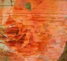 Peeling paint Poppy by tdash
