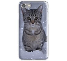Kitten In A Snow Storm IPhone Case iPhone Case/Skin