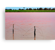 The Pink Lake # 2 Canvas Print