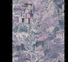 USGS Topo Map Washington State WA Inkster Lake 20110405 TM Inverted by wetdryvac