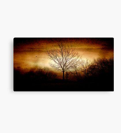East Devon Morn with Moon Layer Burn Canvas Print