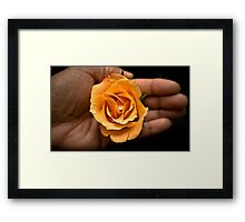 Gentle Touch  Framed Print