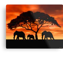Acacia Elephant Sunset Metal Print