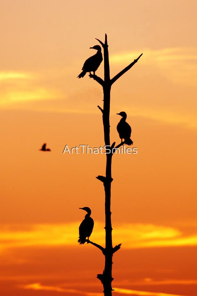 Cormorants Sunset by John Hartung