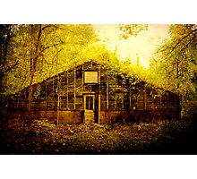 Abandoned Green House- soon to be demolished Photographic Print