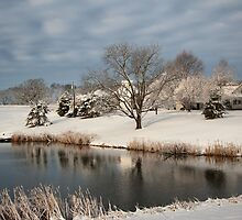An Iowa Farmstead in Winter by cwwycoff