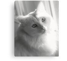 It's only natural (Delain in B/W) Canvas Print