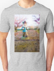 Spring Path Roy T-Shirt