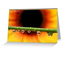 """Sunflower droplets"" Greeting Card"