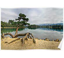 Lac Beauvert, Jasper National Park Poster