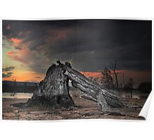 Fire Wood - Lake Fyans The Grampians Victoria Poster