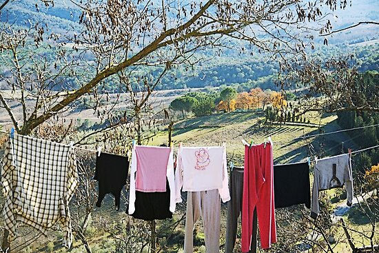 Drying on countryside - Toscana - Italy by gluca