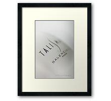 Talisman © Vicki Ferrari Photography Framed Print