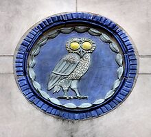 Rice University Owl by SuddenJim
