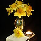 St.Davids Day : March 1st by AnnDixon