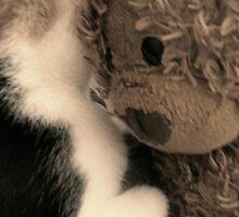 Bear Hug. by AmyAmata