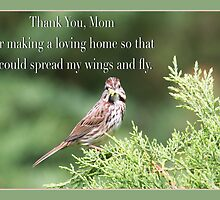 Thank You , Mom Sparrow Greeting Card by daphsam