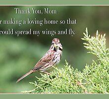 Thank You , Mom Sparrow Greeting Card by daphsam