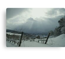 Winter Touches Canvas Print
