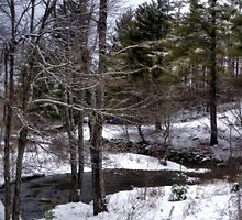 Winter Stream by Monica M. Scanlan