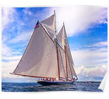 Sailing Beauty Poster