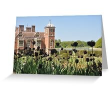 Black Tulips at Blickling Greeting Card