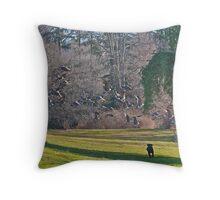 Wild Geese ! Chasing a Dream! Throw Pillow