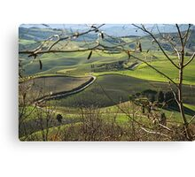 Toscana countryside Canvas Print