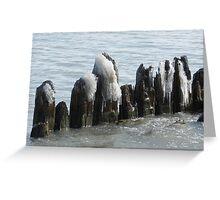 Rotting Pier Greeting Card