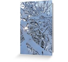 Black and Blues Greeting Card