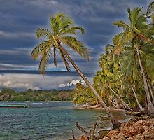 Panama. Bocas del Toro. Colon Island. The beach. by vadim19