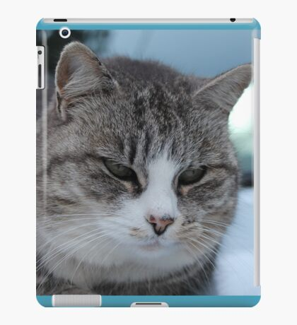 Uninterested Cat iPad Case/Skin