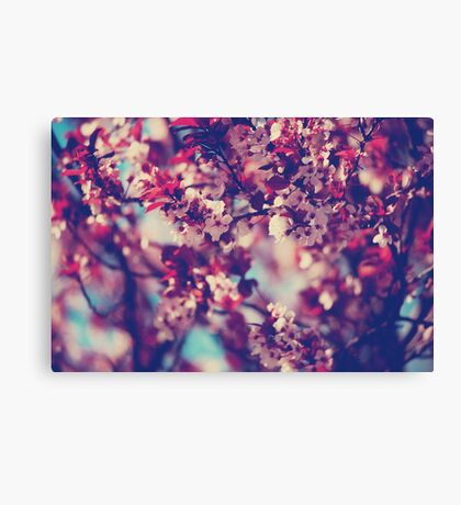 That In-Between Place Canvas Print