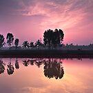 farmer-reflection-sunrise by Dinni H