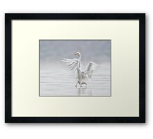 Landing in the Fog Framed Print