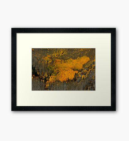 Fine Art of Nature Framed Print