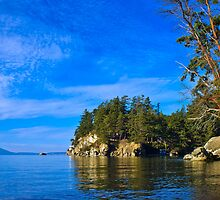 Still afternoon day at Wildcat Cove by Uri Z. Fogel