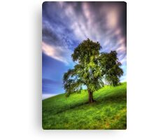 The Lonely Observer Canvas Print