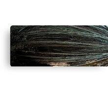 tree panorama 1 Canvas Print