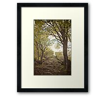 Path of the English #6 Framed Print