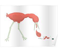 Bird chasing an earthworm Poster