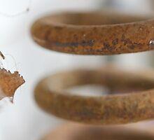 Rusted Leaf by Ayla Morgan Flynne