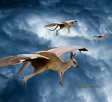 Flying Kangaroos by flexigav